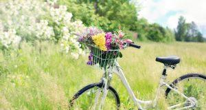 Bicicletta da passeggio